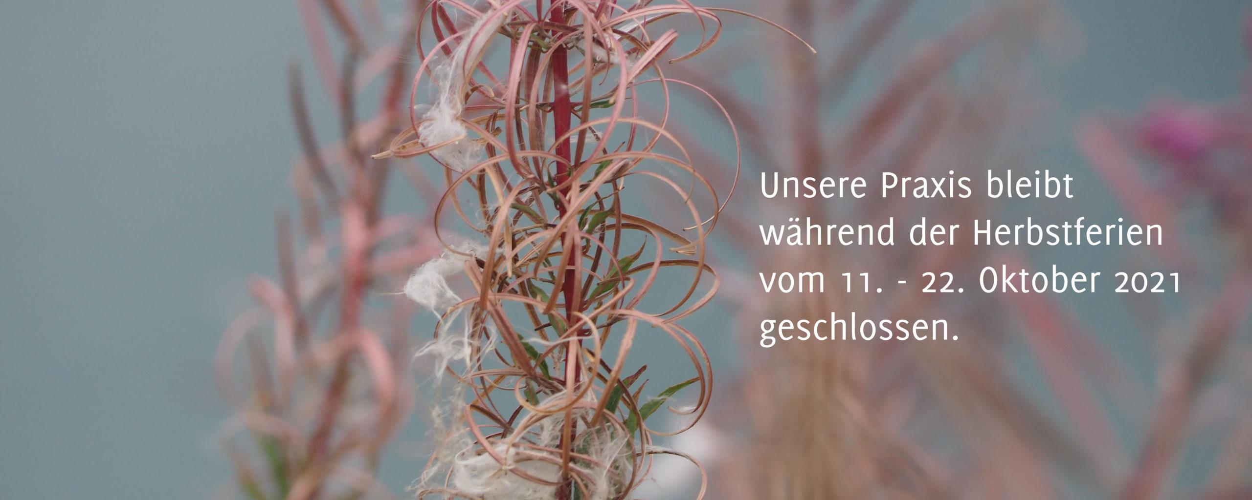 <a href='https://www.hautaerztinnen-leverkusen.de/starter-praxis/'></a>